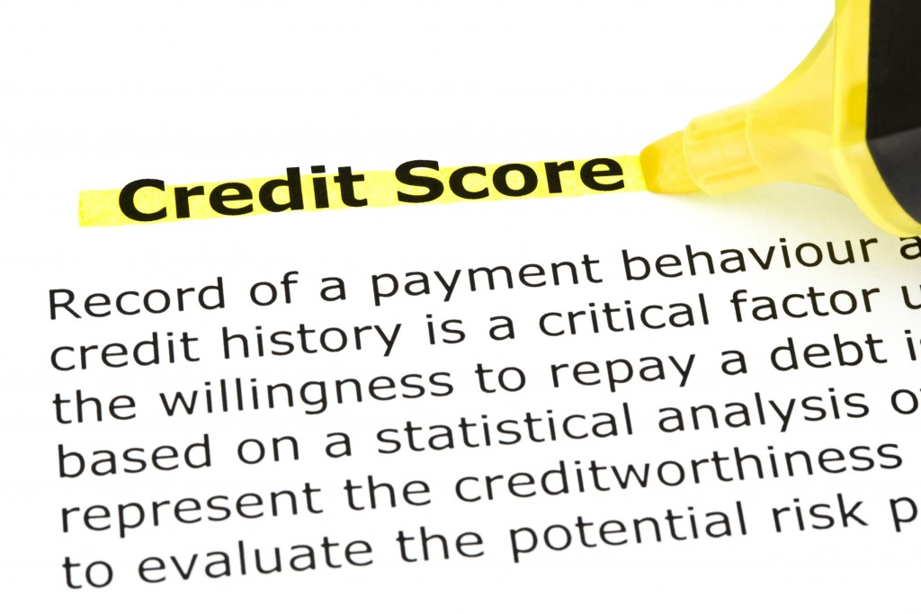 24984271 credit score highlighted in yellow